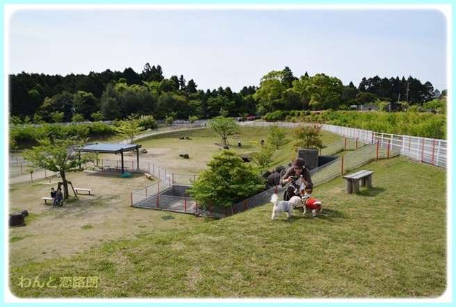 f:id:yasukazu01:20140513204217j:image