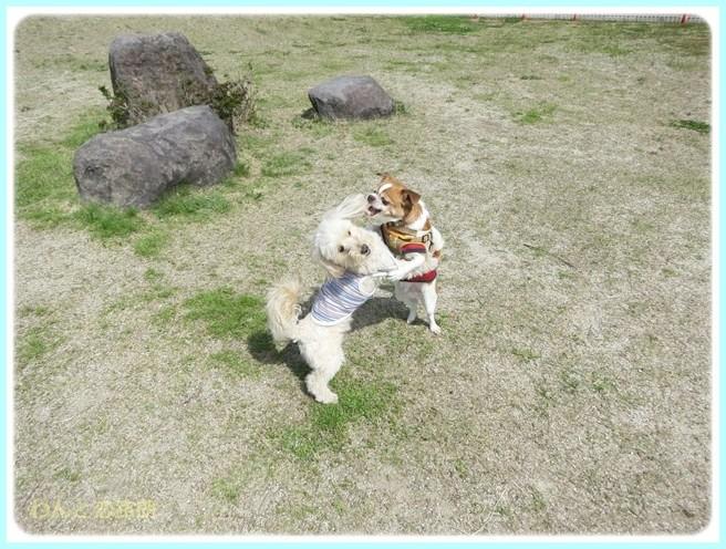 f:id:yasukazu01:20140514223215j:image