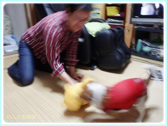 f:id:yasukazu01:20140517200342j:image