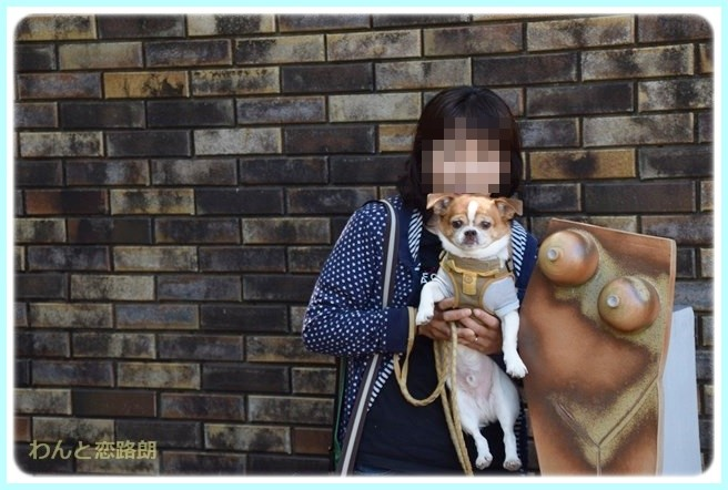 f:id:yasukazu01:20140520194639j:image