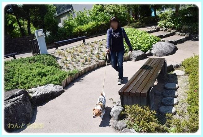 f:id:yasukazu01:20140520194642j:image