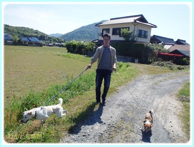 f:id:yasukazu01:20140520200911j:image