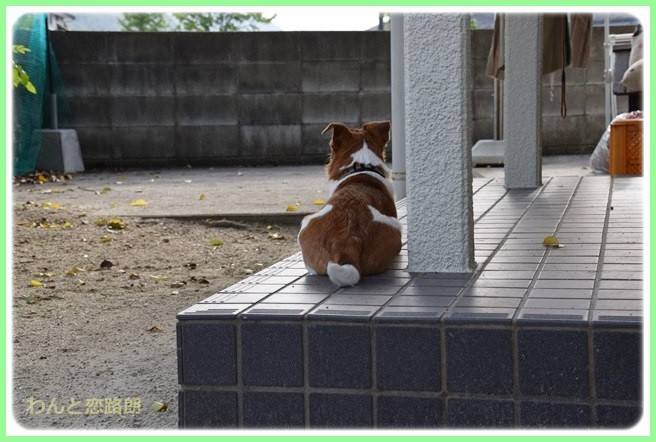 f:id:yasukazu01:20140523222302j:image