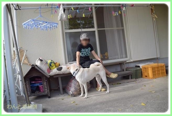 f:id:yasukazu01:20140523222304j:image