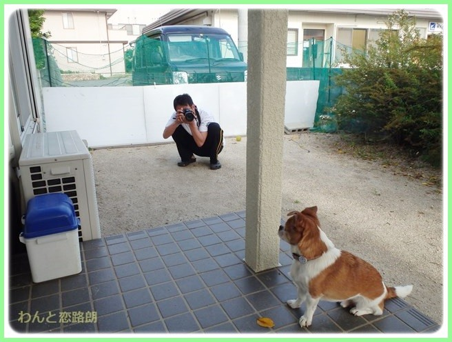 f:id:yasukazu01:20140524204101j:image