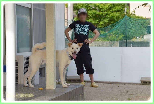 f:id:yasukazu01:20140524204457j:image
