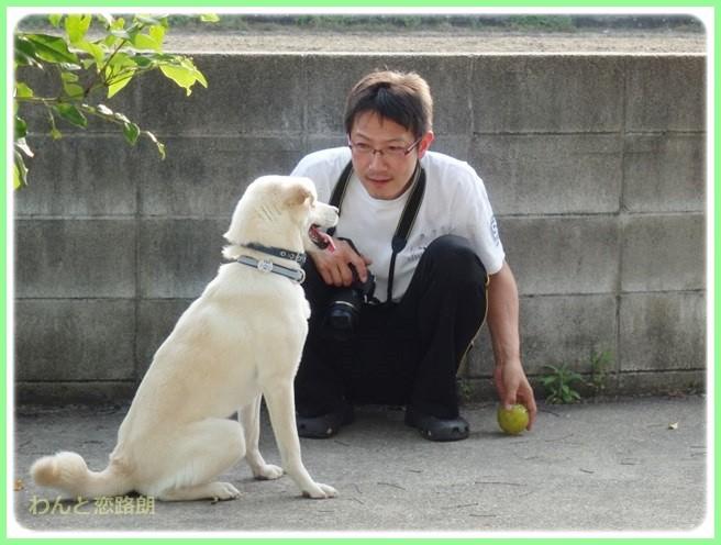 f:id:yasukazu01:20140524204954j:image