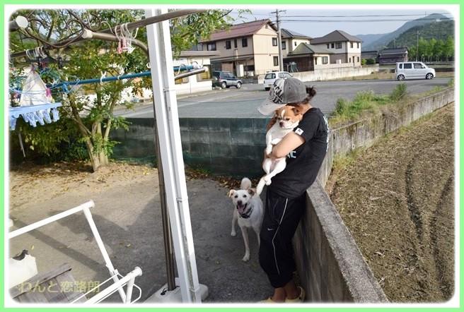 f:id:yasukazu01:20140524205450j:image