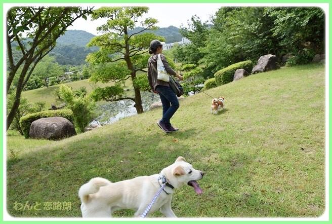 f:id:yasukazu01:20140525202752j:image