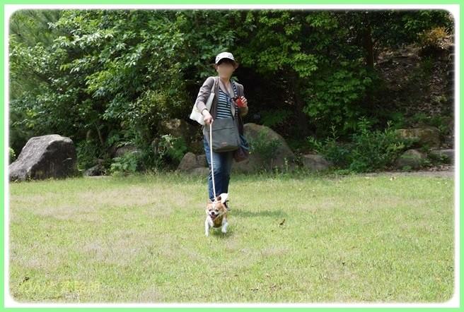 f:id:yasukazu01:20140525202754j:image