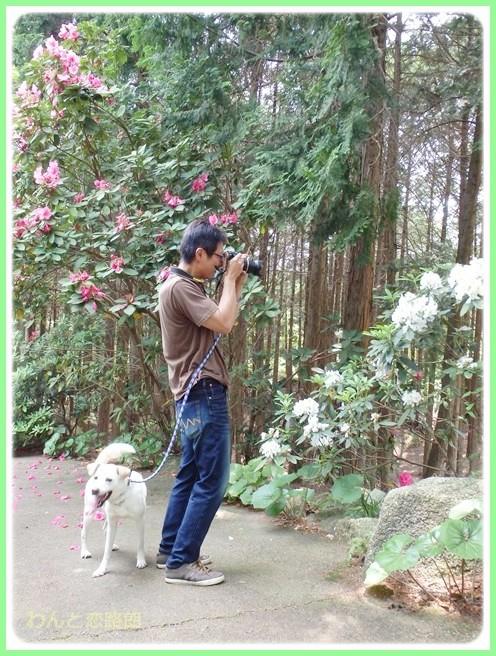 f:id:yasukazu01:20140526192943j:image