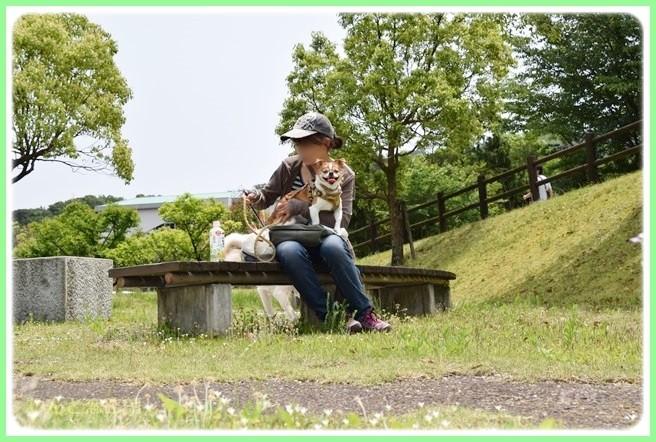 f:id:yasukazu01:20140526195418j:image