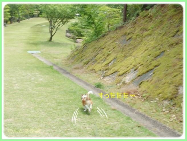 f:id:yasukazu01:20140529201216j:image