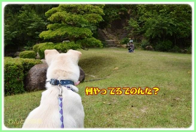 f:id:yasukazu01:20140529201217j:image
