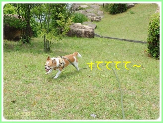 f:id:yasukazu01:20140529201752j:image