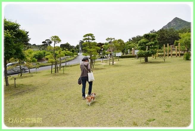 f:id:yasukazu01:20140529202606j:image
