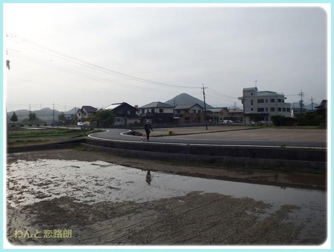 f:id:yasukazu01:20140530095939j:image