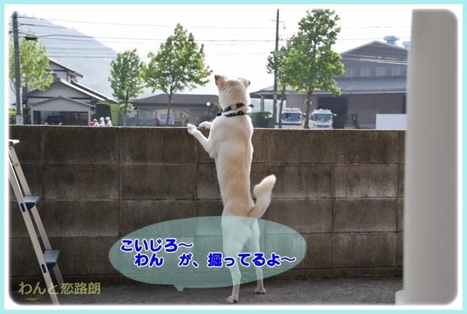 f:id:yasukazu01:20140602221006j:image