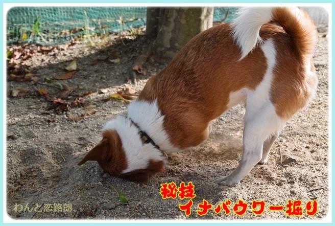 f:id:yasukazu01:20140602221008j:image