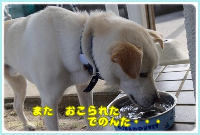f:id:yasukazu01:20140602221010j:image