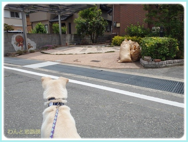 f:id:yasukazu01:20140603212833j:image
