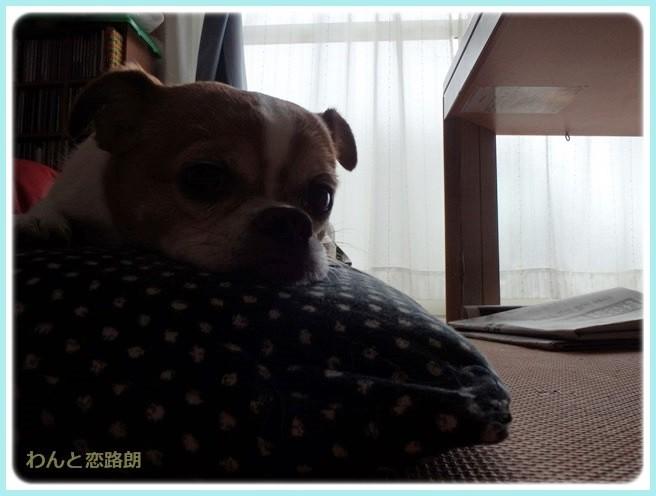 f:id:yasukazu01:20140604203319j:image