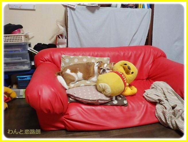 f:id:yasukazu01:20140605225541j:image