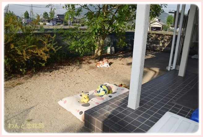 f:id:yasukazu01:20140607215940j:image