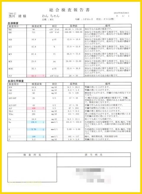 f:id:yasukazu01:20140609200209j:image