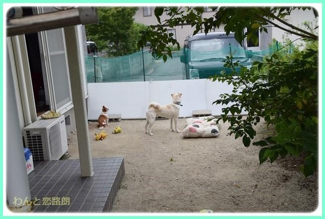 f:id:yasukazu01:20140616205328j:image