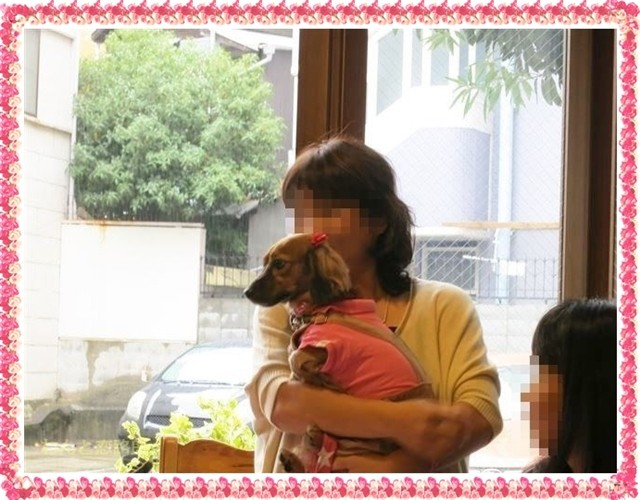 f:id:yasukazu01:20140618213816j:image