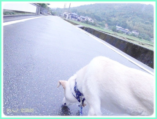 f:id:yasukazu01:20140618215649j:image