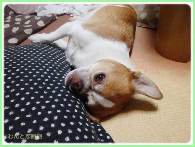 f:id:yasukazu01:20140627220018j:image
