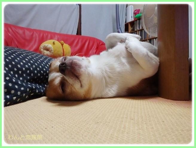 f:id:yasukazu01:20140627220019j:image