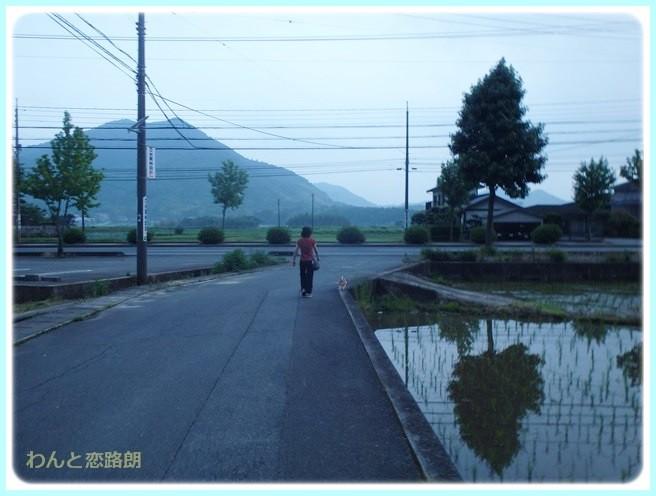 f:id:yasukazu01:20140629203413j:image