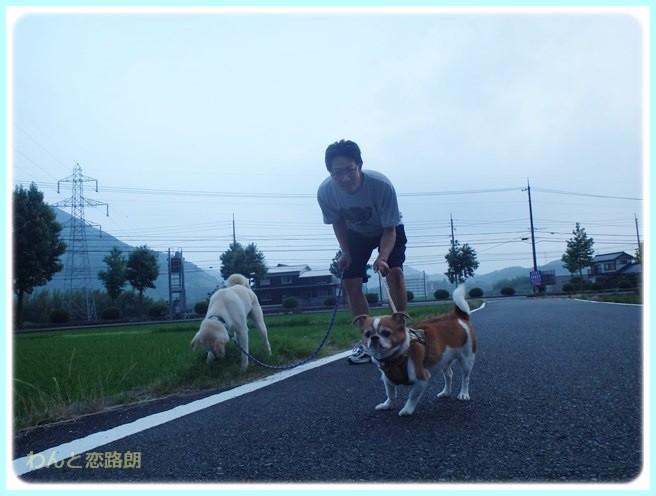 f:id:yasukazu01:20140629205046j:image