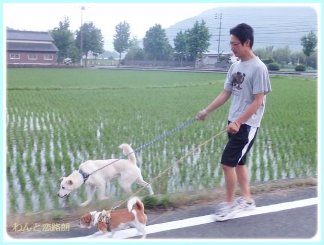 f:id:yasukazu01:20140629205047j:image