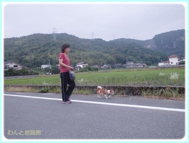 f:id:yasukazu01:20140629205933j:image