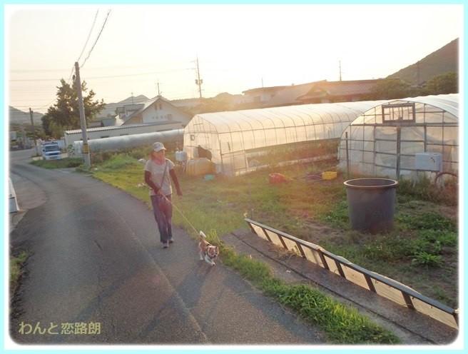 f:id:yasukazu01:20140701222846j:image
