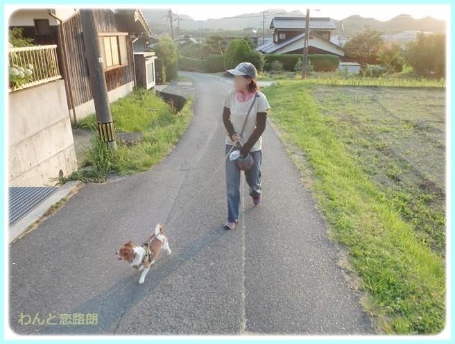 f:id:yasukazu01:20140701222848j:image