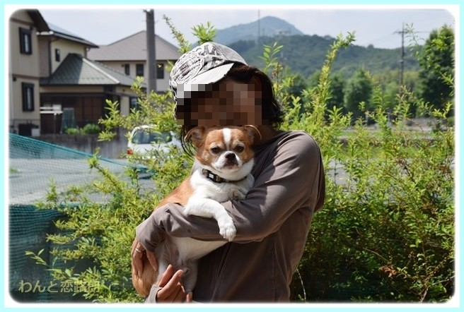 f:id:yasukazu01:20140703224935j:image