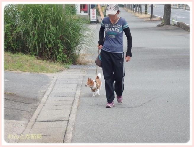 f:id:yasukazu01:20140704205943j:image