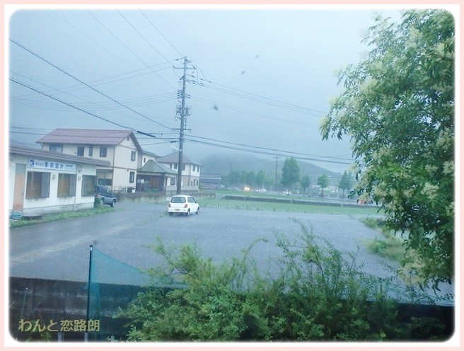 f:id:yasukazu01:20140707202255j:image