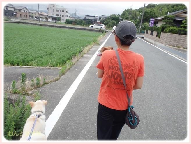 f:id:yasukazu01:20140708211523j:image