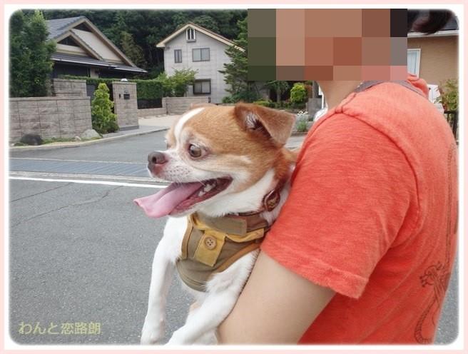 f:id:yasukazu01:20140708211850j:image
