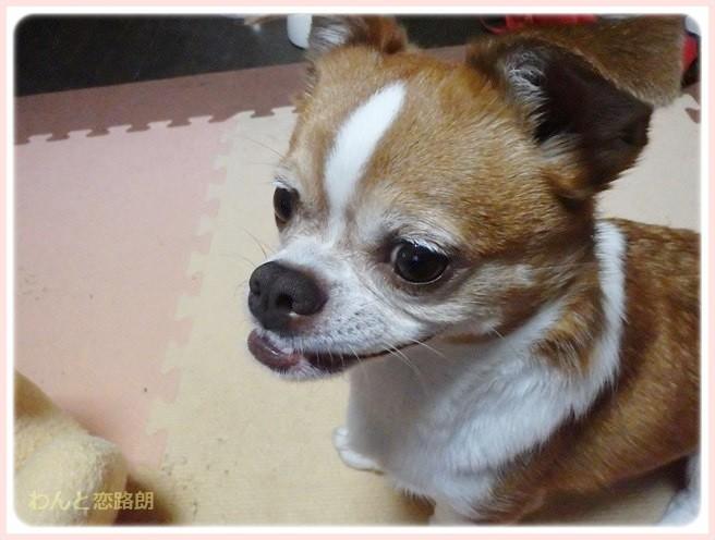 f:id:yasukazu01:20140710222541j:image
