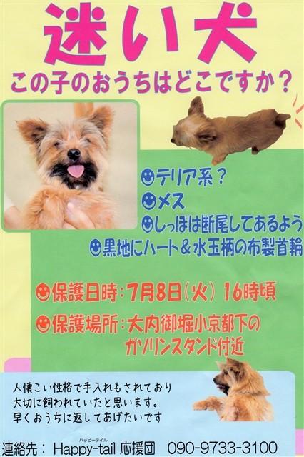 f:id:yasukazu01:20140712184232j:image