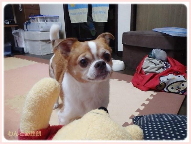 f:id:yasukazu01:20140715224817j:image