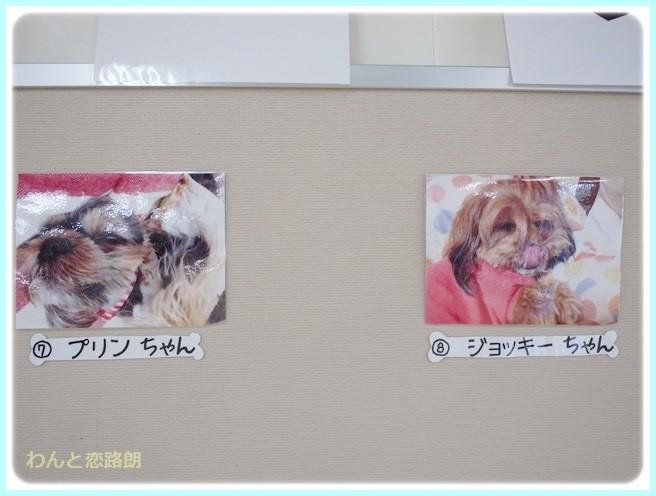 f:id:yasukazu01:20140719193115j:image