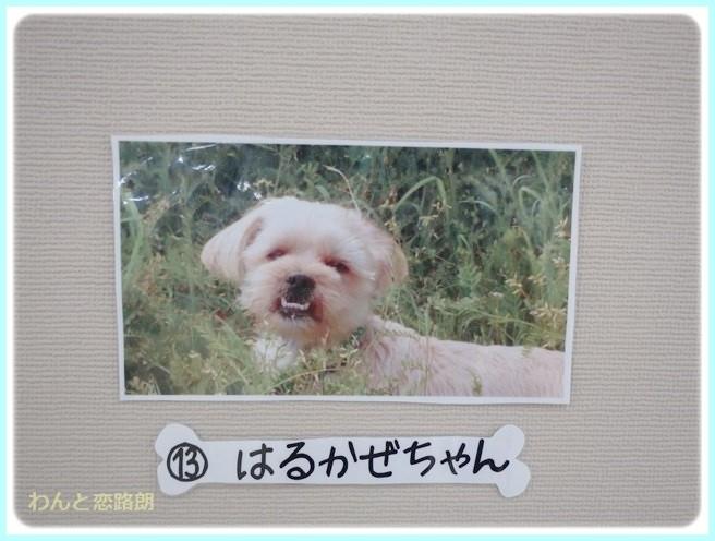 f:id:yasukazu01:20140719193306j:image